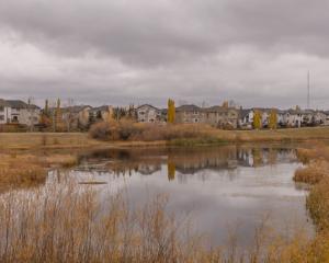 Cougar Ridge Calgary Alberta