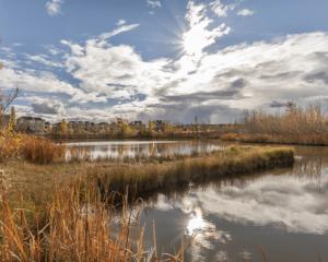 Royal Oak Calgary Alberta